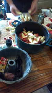pol apple